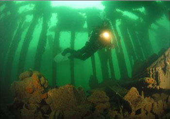 diving in plymouth